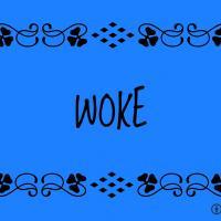 Woke Companies/ places that discriminate  against conservatives