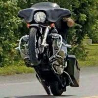 Harley Davidson Bikes and Shit