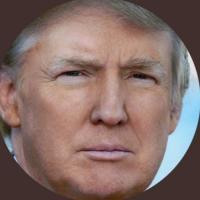 realDonaldJTrump