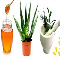 Medicinal Herb & Essential Oil Learning
