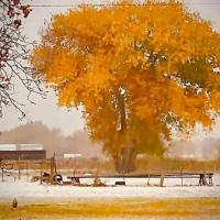 Uintah Basin Holiday And Events