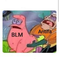 Free Group Memes