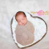 Stephanie Beltran Photography