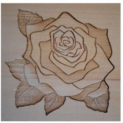 Engraved Image - Rose