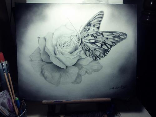 Mariposa 08